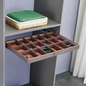 Pull-out tray with divider